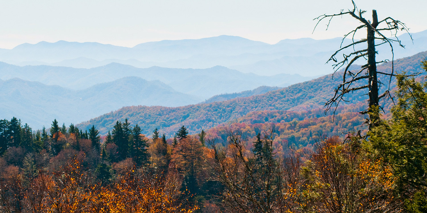 Smoky Mountains in the fall.